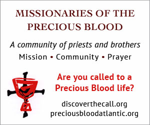 Missionaries of the Precious Blood A community of priests and brothers Mission Community Prayer Are you called to a Precious Blood Life? Click here to visit the website